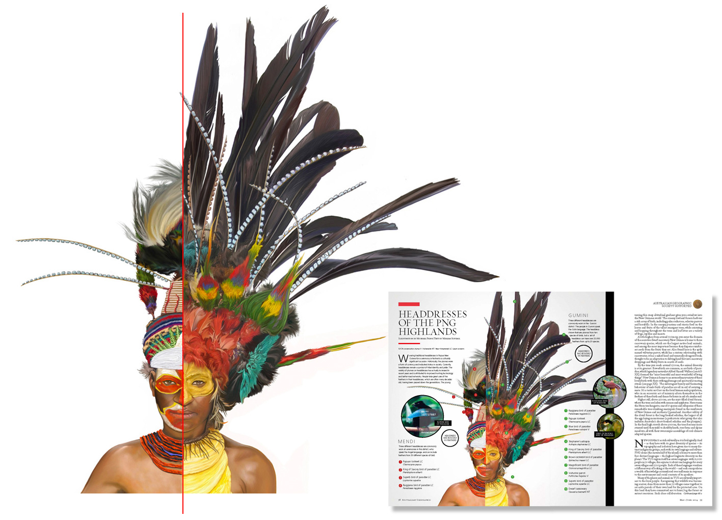 Papua New Guinea Head Dress